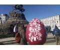 Фестиваль тюльпанов в Киеве 02.05.2020